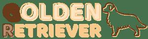 Golden Retriever : découvrez cette race et ses caractéristiques